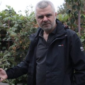 Черкасский садовник выращивает 50 видов экзотических растений