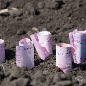 С отменой моратория аграрии требуют запретить продажу земли иностранцам