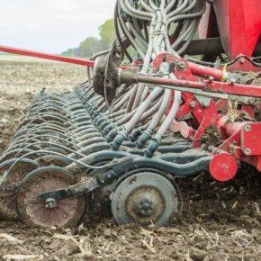 Аграрии завершают посевную озимых зерновых