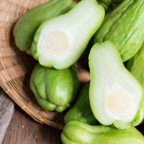 Мексиканский огурец может конкурировать с традиционными овощными культурами на юге Украины