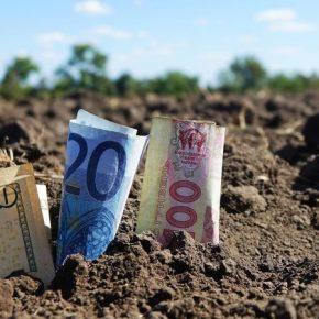 Вопрос продажи земли иностранцам вынесут на референдум — Зеленский
