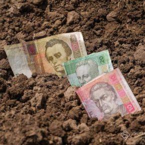 Женщины в агросекторе зарабатывают на 32,3% меньше, чем мужчины