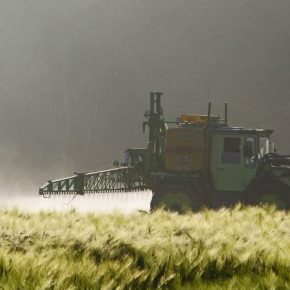 Ученые нашли способ блокировать резистентность насекомых к пестицидам