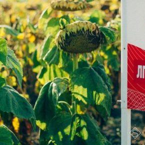 Агропроизводителей приглашают на АгроПлатформу Лимагрейн в Днепр