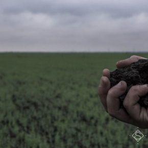 В Верховной Раде рассмотрят вопрос земельной реформы