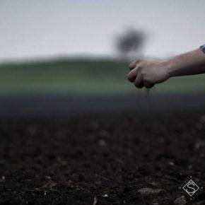 Аграриям презентовали уникальное удобрение с инсектицидным эффектом