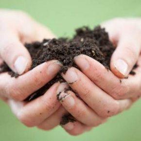 Украинское почвенное партнерство будет заботиться о сохранении отечественных земель