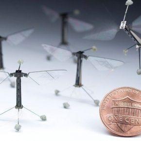 Для опыления растений создано летающих микроскопических роботов