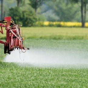 Франция запретит 36 гербицидов на основе глифосата
