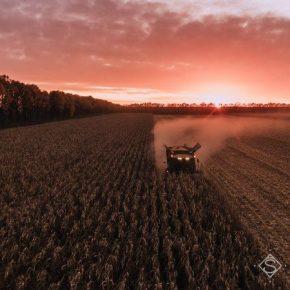 На Винниччине получен один из самых больших урожаев зерна в Украине