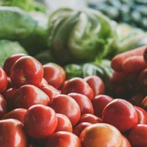 Семейные хозяйства Херсонщины объединяются для выращивания овощей