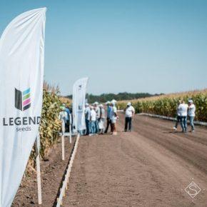 LNZ презентовала новые гибриды кукурузы LEGEND
