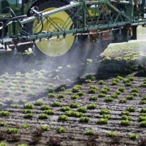 Швейцария запретила фунгициды на основе хлороталонила