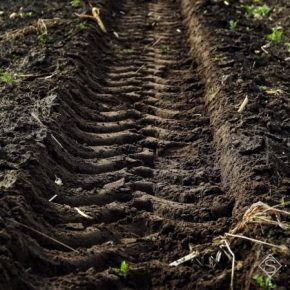 Более половины сельхозземель Украины переуплотнения — специалист