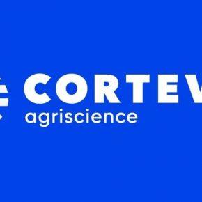 Финансовая эффективность Corteva в сегменте снизилась семена