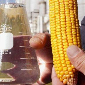 Названы ключевые преимущества использования биоэтанола в качестве топлива
