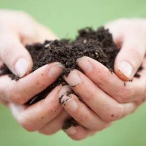 Евросоюз реализует программу по восстановлению почв