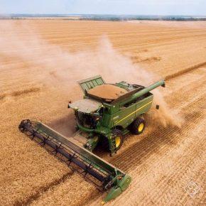 Украина вошла в ТОП-3 экспортеров сельскохозяйственных продуктов в ЕС