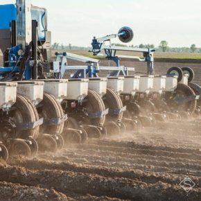 В Украине прогнозируется увеличение площадей под кукурузой и соей