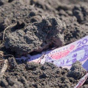 Озвучено минимальную стоимость гектара земли после отмены моратория