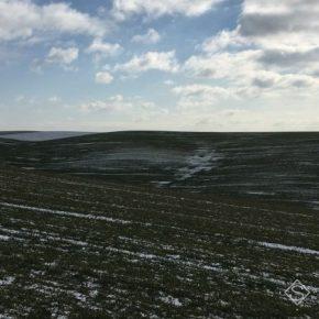 Озимые на Херсонщине прошли испытание аномальной зимой