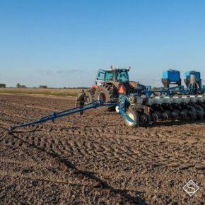 Сумские аграрии расширяют посевные площади под сельхозкультурами