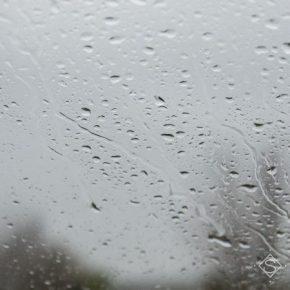 Дожди приостановили посевную ранних яровых культур в Винницкой области