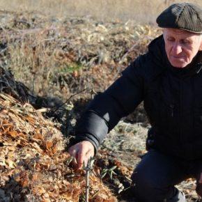 Луганский фермер выращивает овощи и экзотические культуры по органической технологии