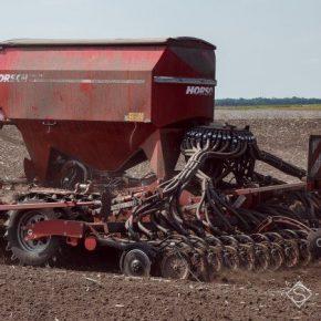До конца недели аграрии могут завершить сев яровой пшеницы — прогноз