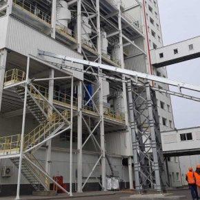 Семенной завод Bayer в Украине произвел первые полмиллиона мешков семян