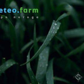 Февральские дожди улучшили ситуацию с вологозабезпеченням почвы на полях