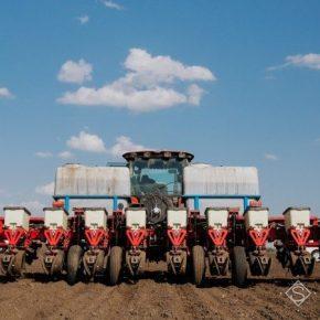 В Одесской области аграрии начали сеять подсолнечник