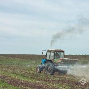 Николаевские аграрии завершают подкормку озимых зерновых