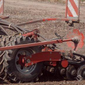Аграриям придется пересеять около 800 тыс. га озимых — прогноз