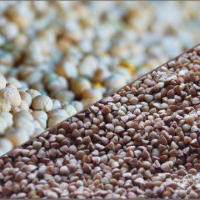 Аграрии увеличат производство гречки и гороха — прогноз