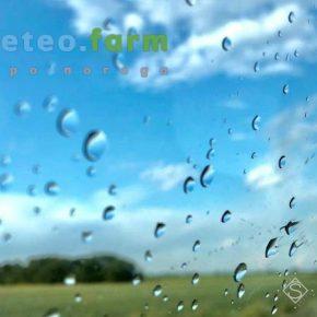 Неделя в Украине обещает быть теплым и дождливым — прогноз погоды