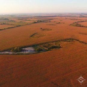 В условиях карантина аграриям предоставили бесплатный доступ к спутникового мониторинга полей