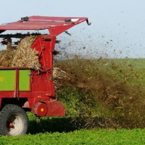 За последние 30 лет объемы внесения органических удобрений сократились в 22 раза