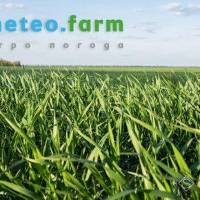 Мартовские температуры превысили многолетние климатические нормы — Метео Фарм