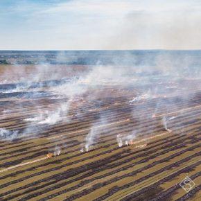 Поджог сухой травы: штрафы могут увеличиться в 200 раз