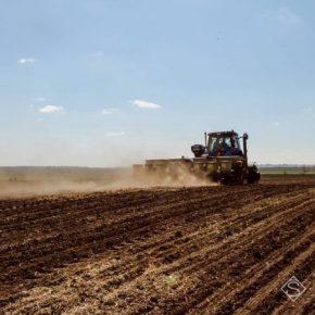 Запасы влаги способствуют проведению весенней посевной в Сумской области