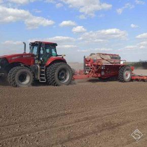 Посевная подсолнечника и кукурузы на Полтавщине подходит к концу