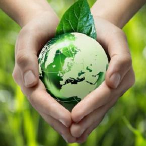 Четверть сельхозземель в ЕС планируют перевести в органические