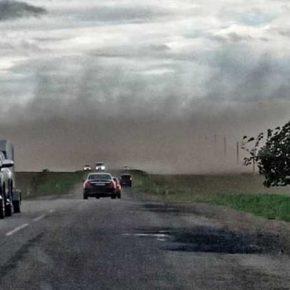 Пыльные бури нанесли ущерб посевам в западных областях