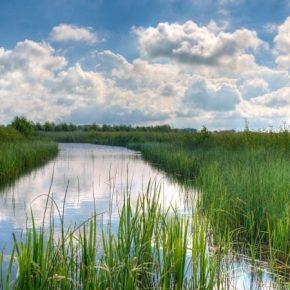 Дефицит осадков спровоцировал низкую водность рек — Укргидроэнерго