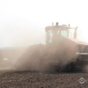 На полях Черкащины царит почвенная засуха