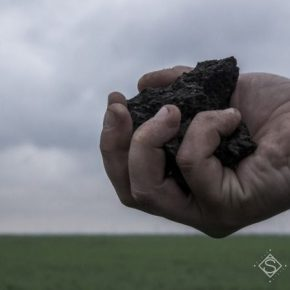 Глобальное потепление провоцирует развитие патогенов в почве — ученые