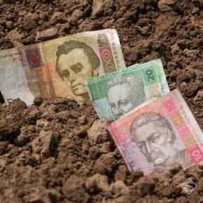 Ученые прогнозируют сокращение инвестиций в сельское хозяйство Украины