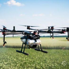 Ученые доказали эффективность фунгицидных обработок посевов дронами