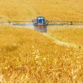 Европейские экологи выступили за сокращение использования пестицидов в сельском хозяйстве